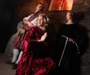 calgary-opera-grave-gala-promotional-photo-2010